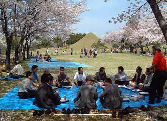 Photographic image of a hanami celebration in Suizenji Park in Kumamoto, Japan
